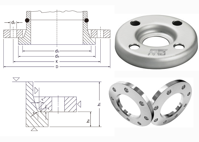 Loose Flange Dimensions